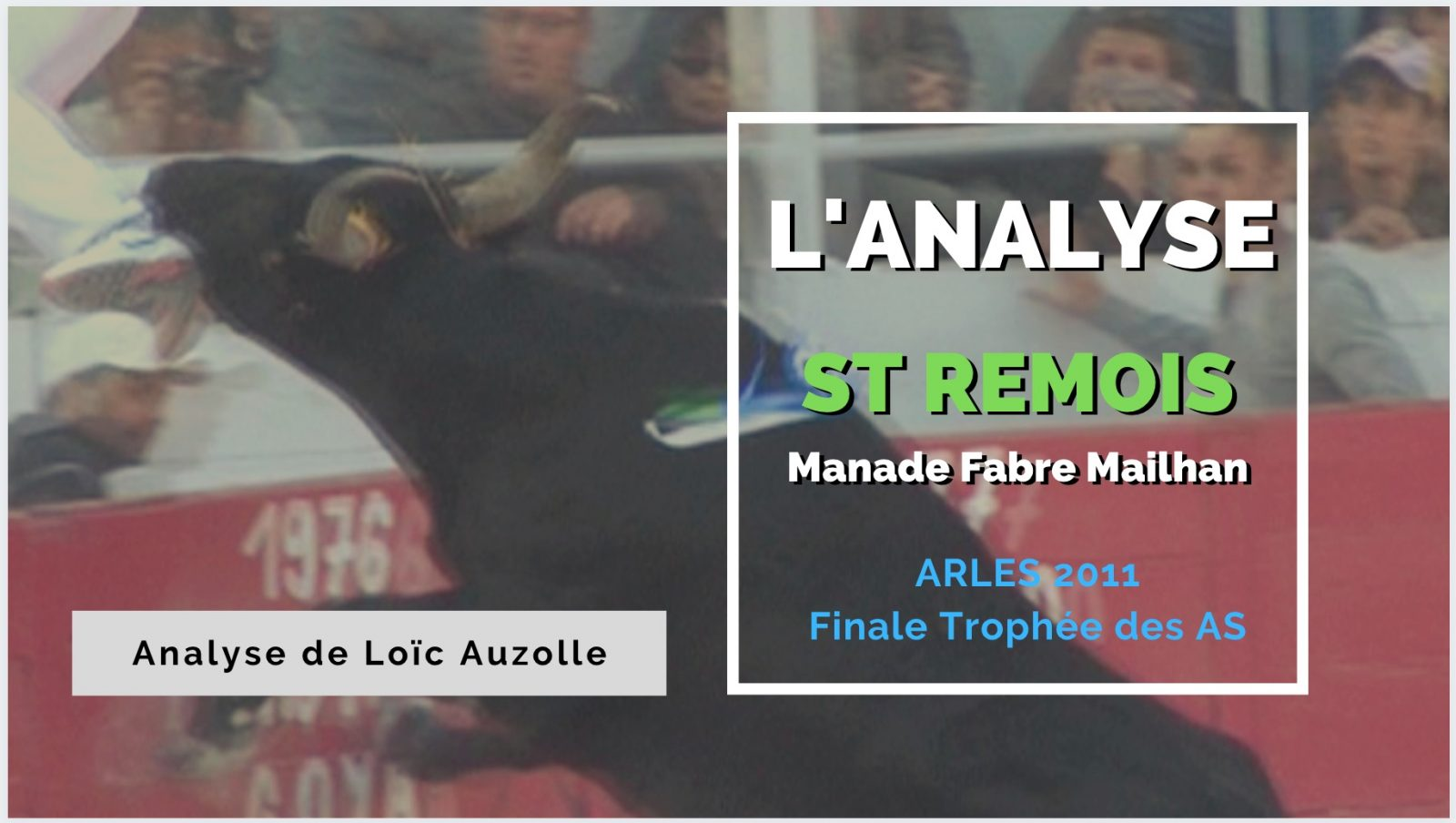 L'ANALYSE – St Remois (Manade Fabre Mailhan) – Arles 2011 – VIDEO