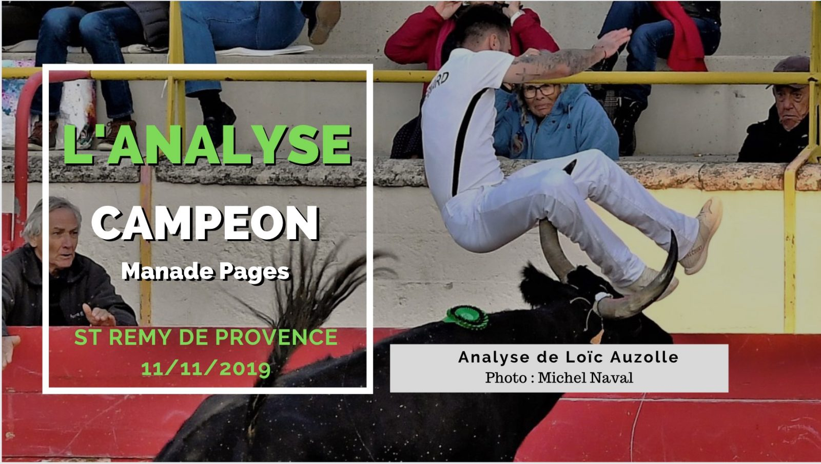 L'ANALYSE – Campeon (Manade Pagès) – VIDEO