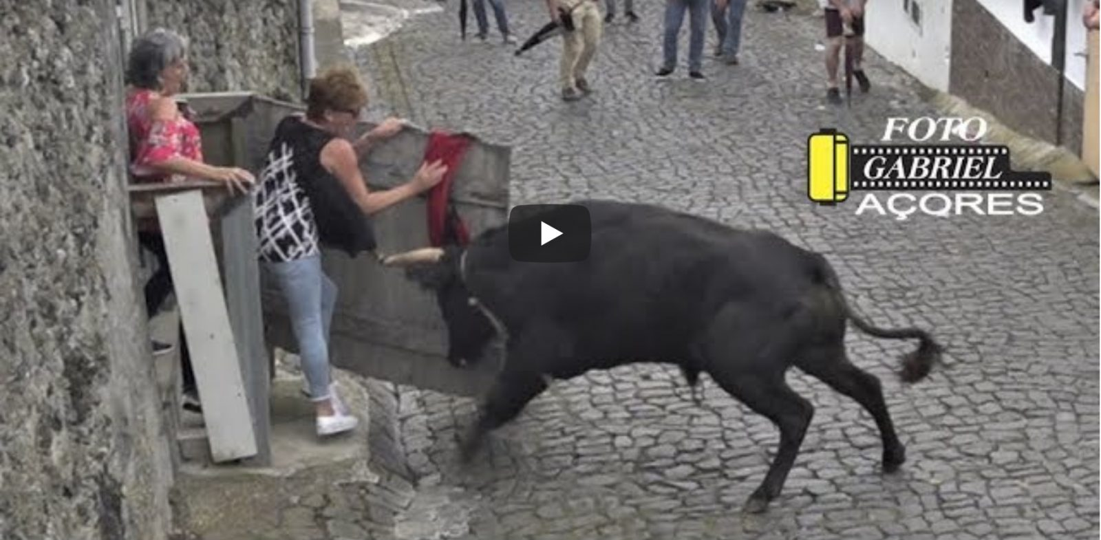 VIDEO DU NET // TOURADA Feteira Mercês – Ilha Terceira Açores