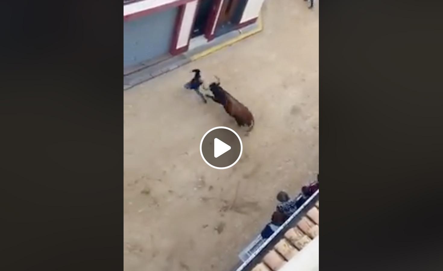 VIDEO DU NET // Une action incroyable