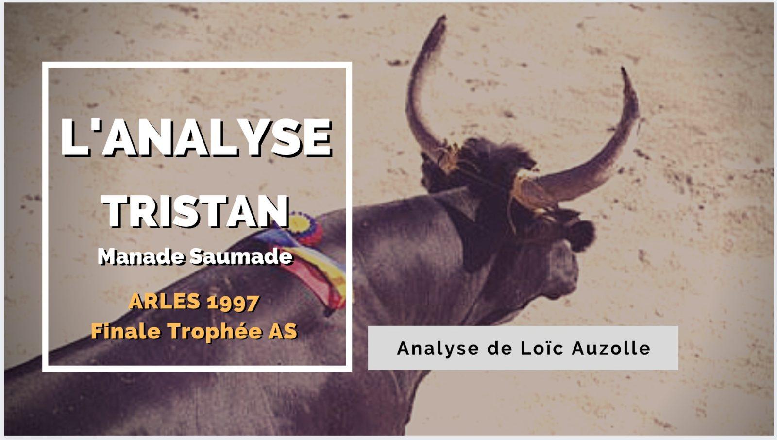 L'ANALYSE – Tristan (Manade Saumade) – Arles 1997 – AU FIL DES BARRIERES