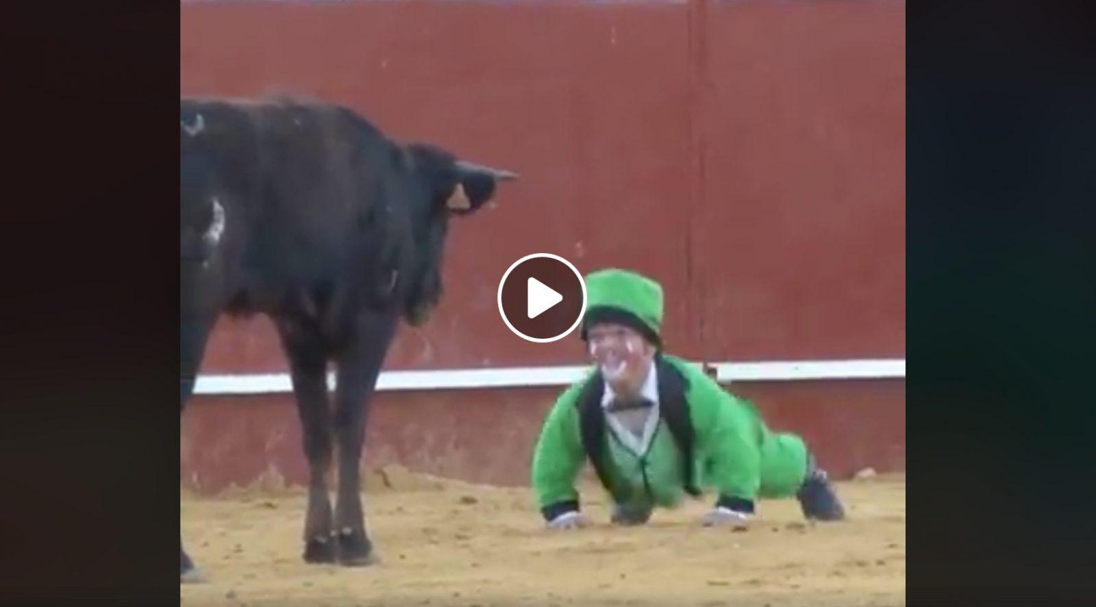 """VIDEO DU NET // Les """"toreros comiques"""""""