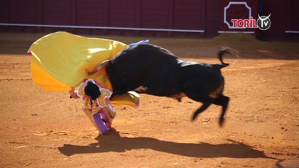VIDEO // Porta gayola Andres Roca Rey à Séville – Féria de Abril 2019