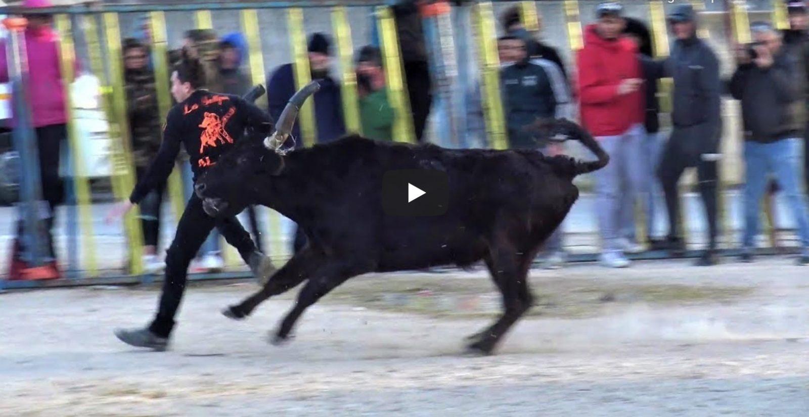 BELLEGARDE (19/01/2020) – Retour en vidéo sur la course au plan