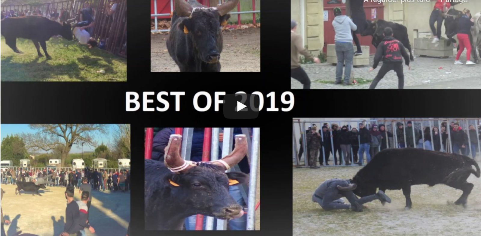 VIDEO // BEST OF 2019