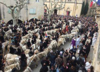 rassemblement guardian chevaux camargue