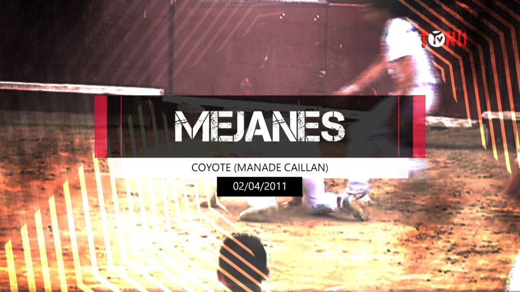 Coyote (Manade Caillan) - Méjanes 02 avril 2011
