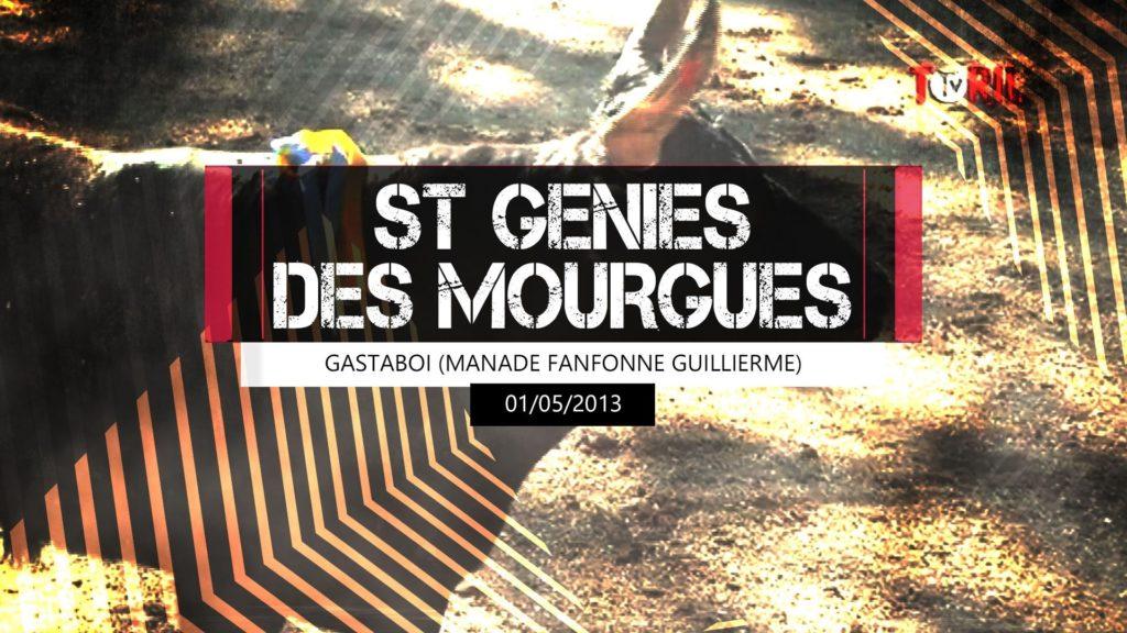 Gastaboï (Manade Fanfonne Guillierme) - St Genies des Mourgues - 01 mai 2013