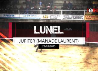 Jupiter (Manade Laurent) - Lunel 29 mars 2015