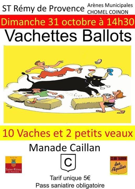 Vachettes ballots du 31 Octobre