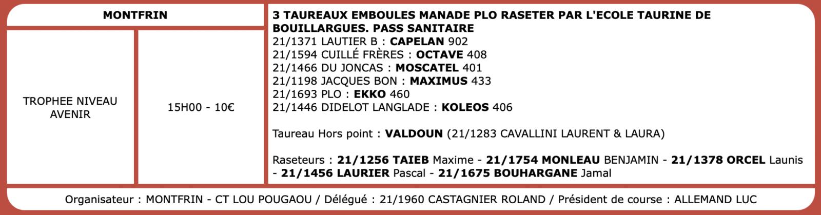 Courses camarguaises du 17 Octobre